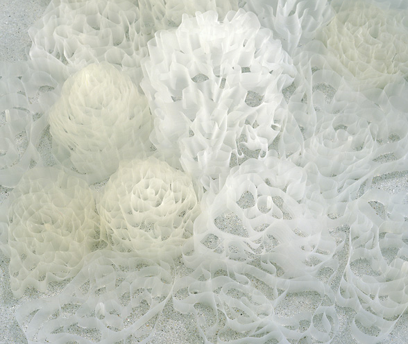 Tara Donovan, Nebulous, 2002 (detail). Scotch tape.