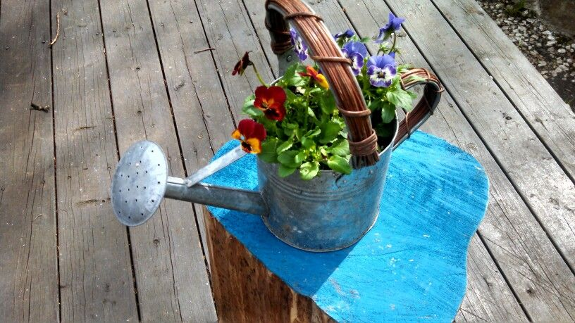 A flower pot on the log I painted