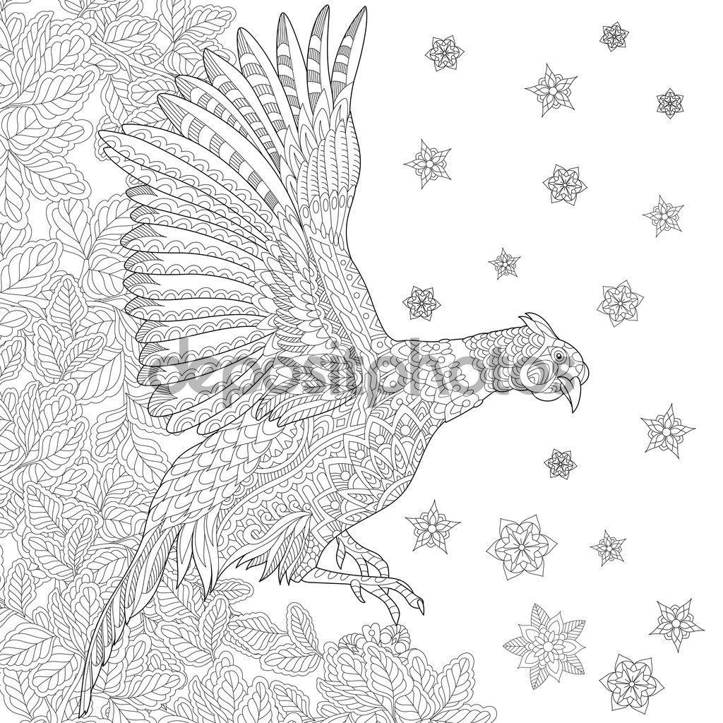 Descargar - Zentangle estilizado pájaro faisán — Ilustración de ...