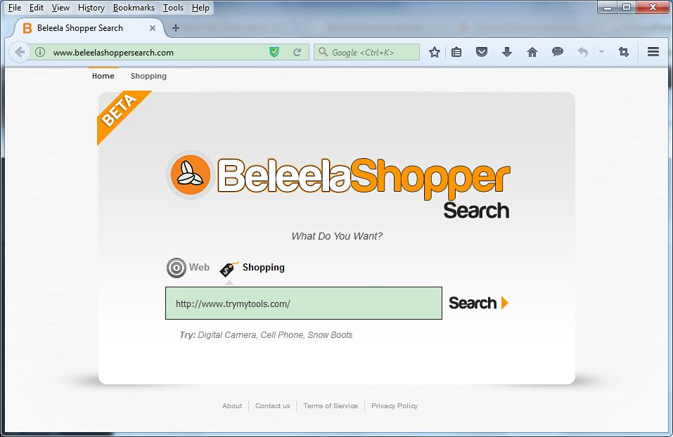 Hi  I am not able to get rid of BeleelaShopperSearch com manually