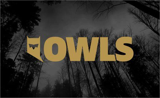Owls (Poland)