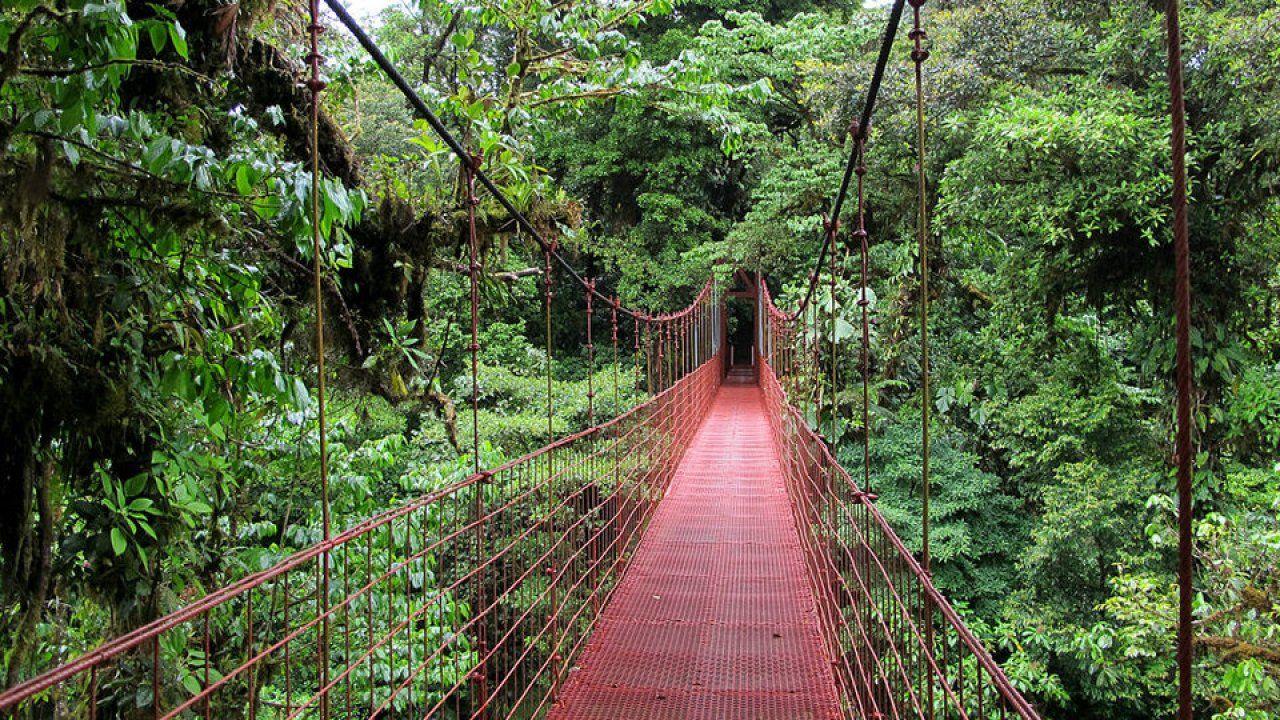 السياحة الأيكولوجية أو البيئية مبادؤها أنشطتها أهميتها وطرق تطويرها Ecoturismo Parques Nacionales Hermosos Paisajes