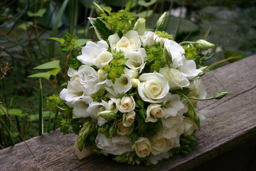 Schnittblumen ::: Barbara Reutimann – Florale Beratung & Gestaltung im Innen- und Aussenraum