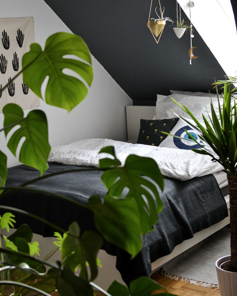 15 Inspirations Pour Une Déco Jungle Urbaine Decoración Bedroom