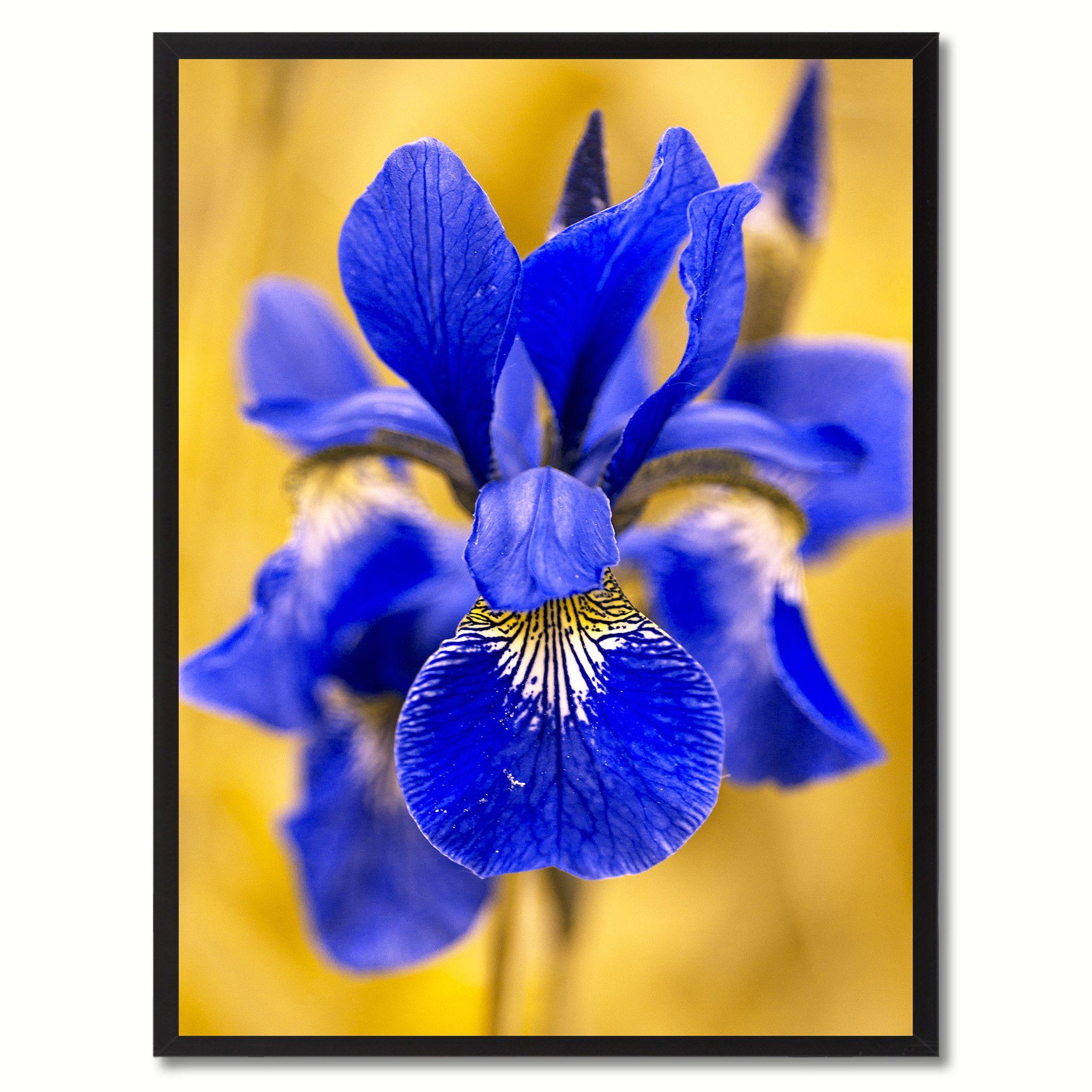 Blue Iris Flower Framed Canvas Print Home Dcor Wall Art Framed