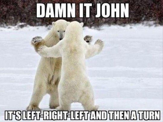 Polar Bear Chacha
