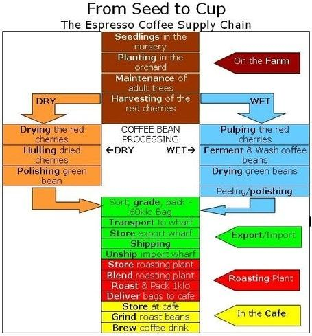 Remarkable Post By An Expert The 15 Steps To Fine Espresso Coffee Espresso Coffee Coffee Supplies Coffee