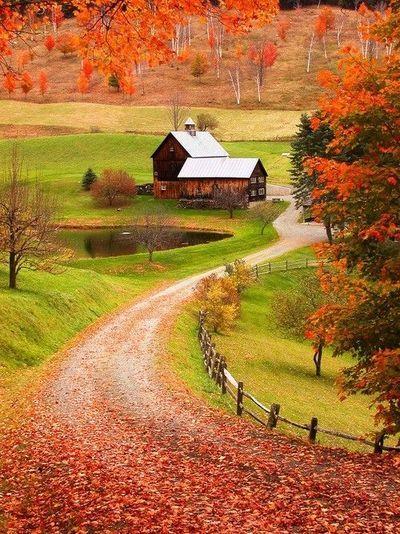 Countryy.