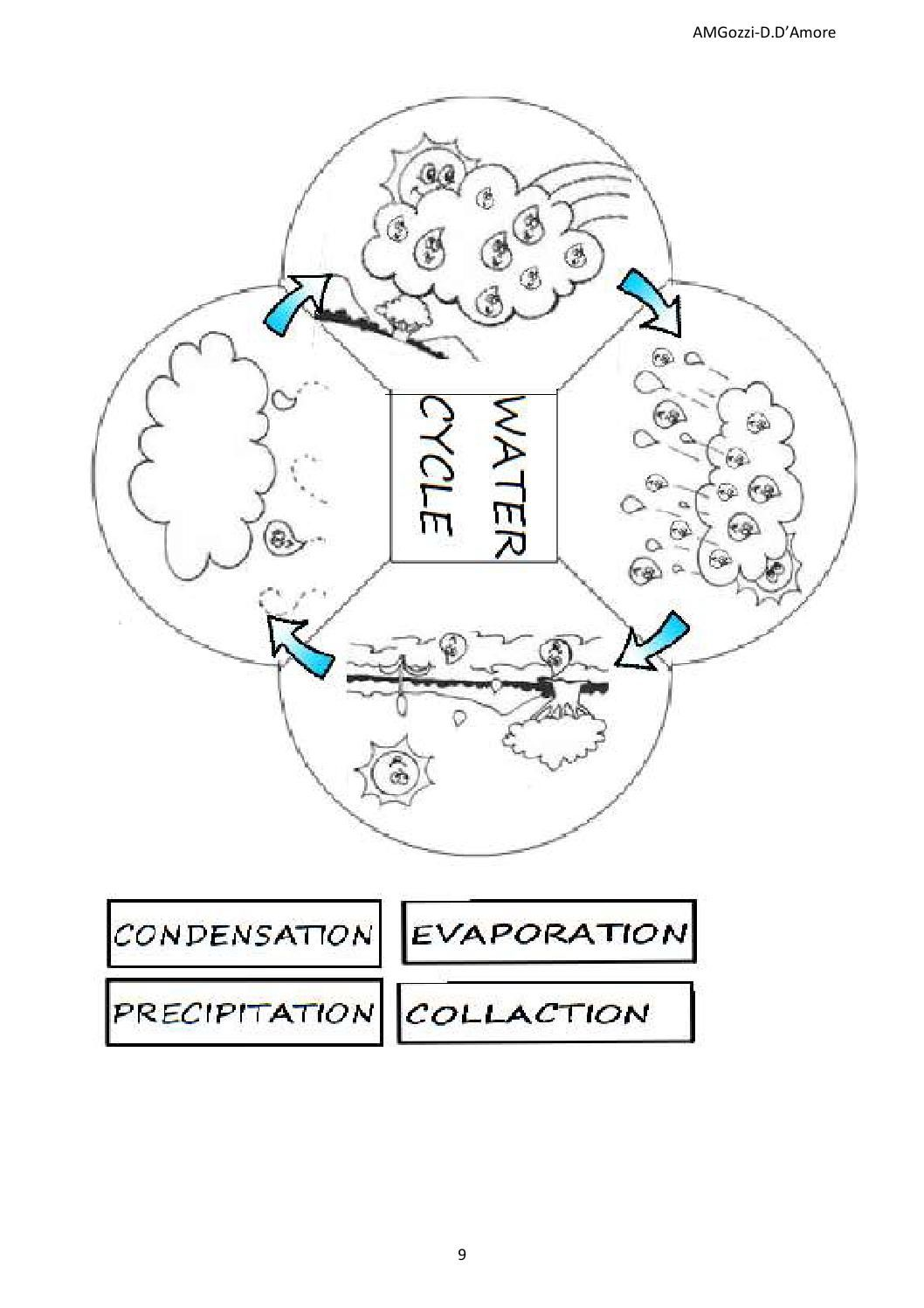 Lapbook Water Cycle Primaria Casteldario Elementary And Prek