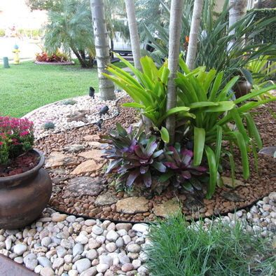 River Rock Garden Would Be Nice Frame For Sago Palm