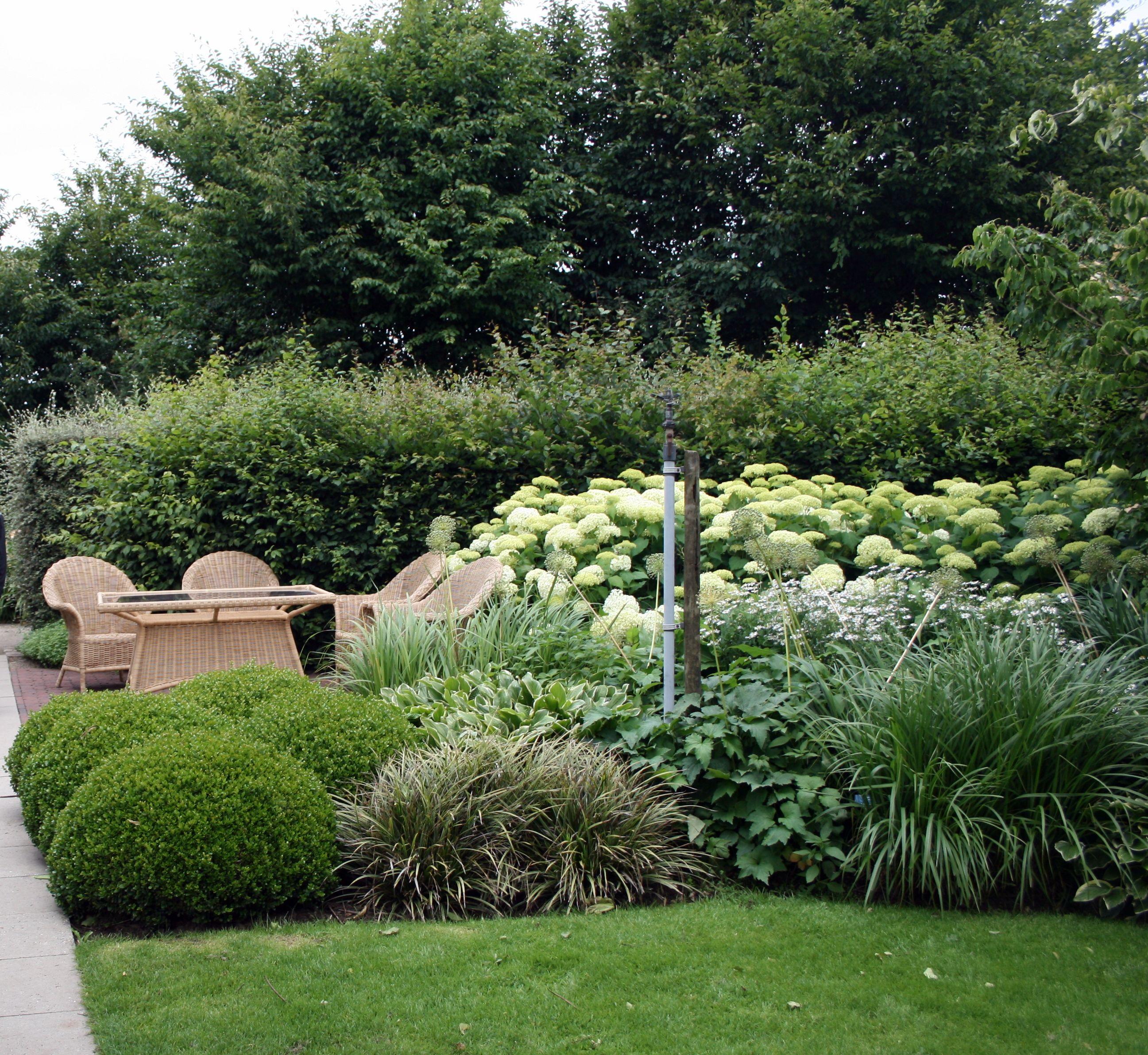 Sitzplatz hortensien gartenreise belgien holland