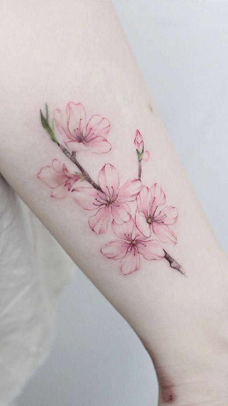 Danity Cherry Blossom Tattoos And Their Meaning Blossom Tattoo Cherry Blossom Tattoo Cherry Blossom Tattoo Shoulder