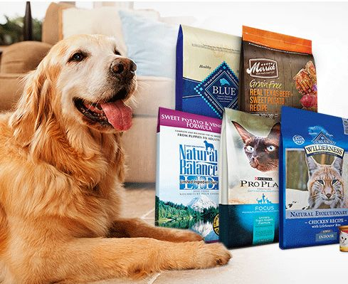 Healthy Start Here Shop At Petco And Get 50 Off Sitewide Pets
