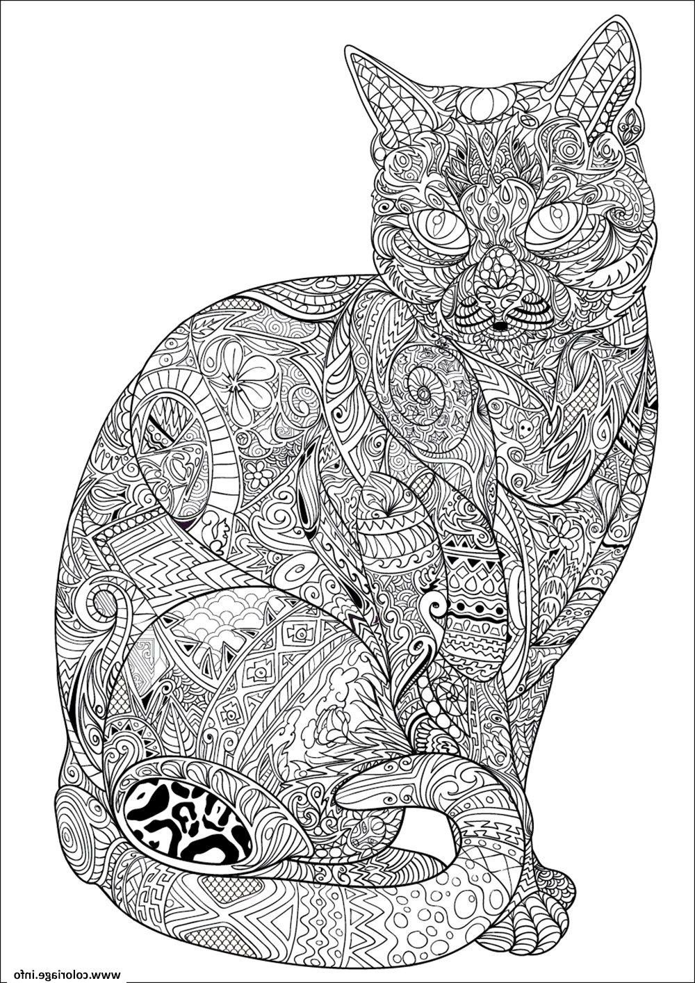 Coloriage Hugo L Escargot Animaux
