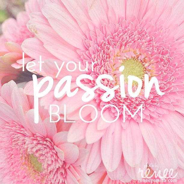Savoring This Moment | Blooming Passion