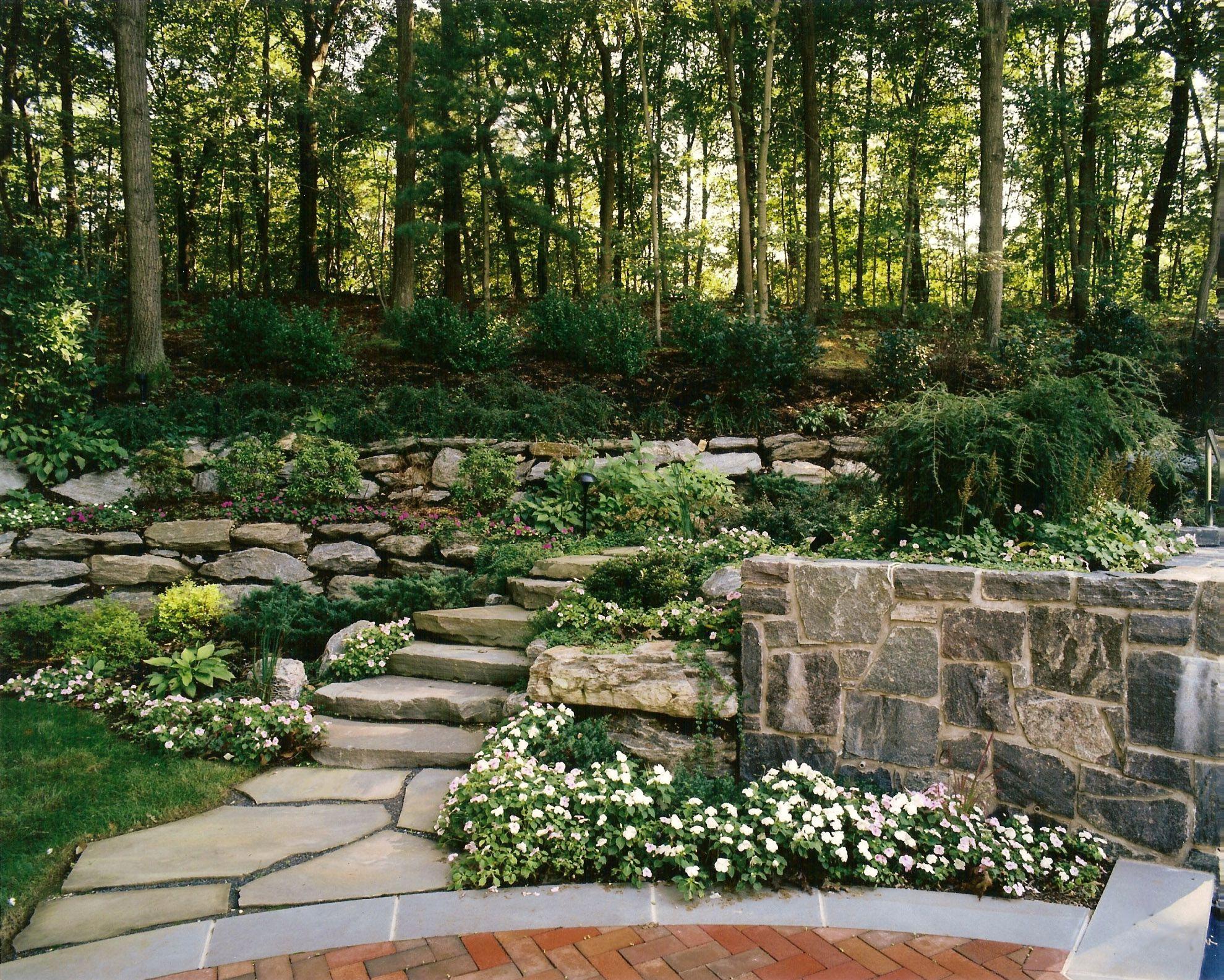 Natural garden landscape  Bluestone slab steps lead to lush secret garden Landscape and