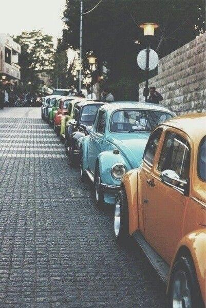 Old Bug Vw Club Beetle Car Classic Cars Carro Antigo School