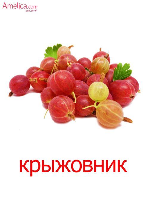 Пин на доске Фрукты-Овощи