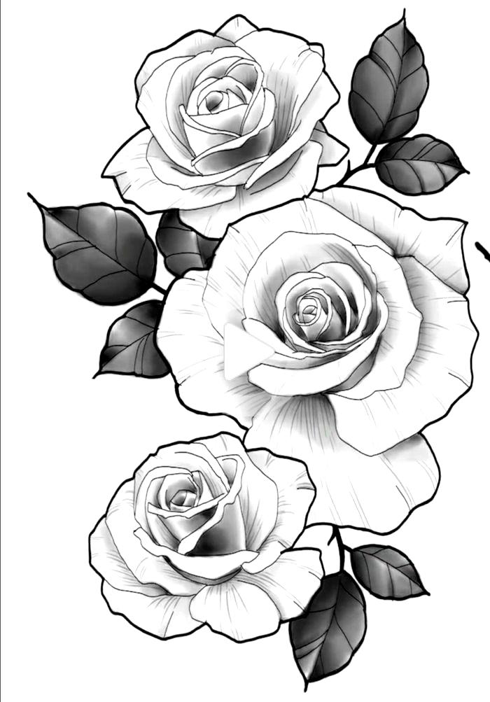 Plantillas De Tattoos De Rosas Y Flores Dibujos Para Tatuaj Dibujos De Rosas Plantillas De Tattoos Disenos De Tatuaje De Flores