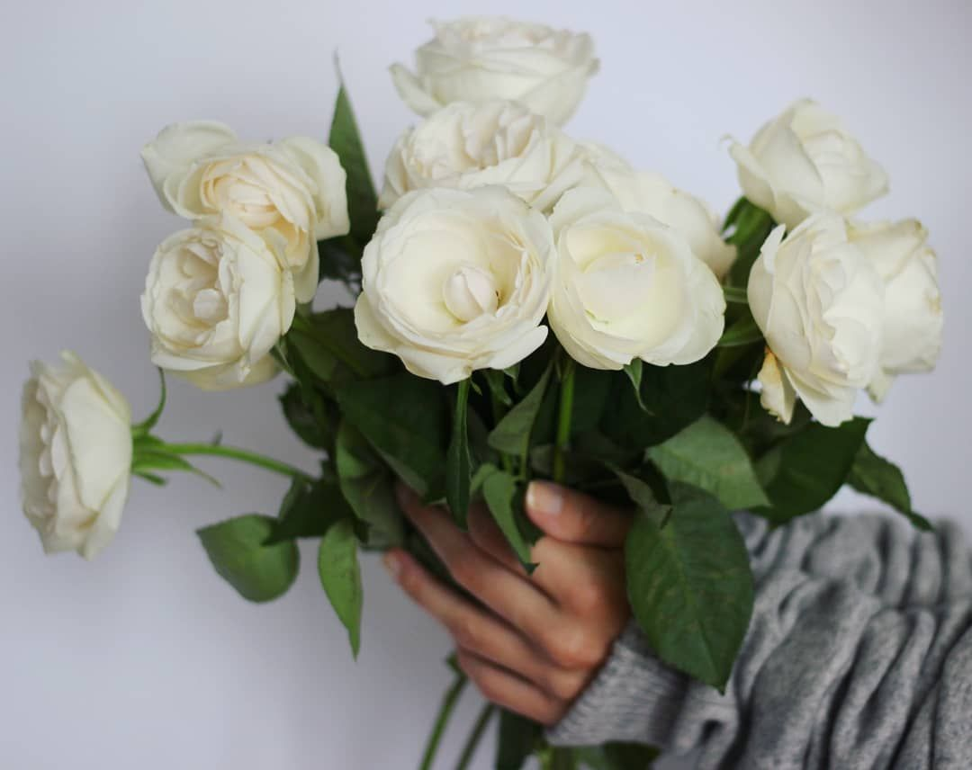 Hello Boys And Girls How Was Your Day These Beautiful Flowers Are Especially For You Summer Flower Flower Daily Flowers Beautiful Flowers Boy Or Girl