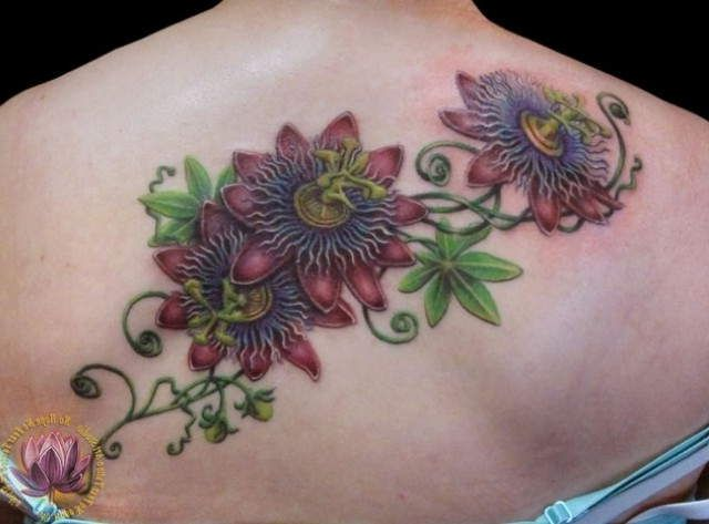 Purple Passion Flower Tattoo Google Search Flower Vine Tattoos Vine Tattoos Tattoos