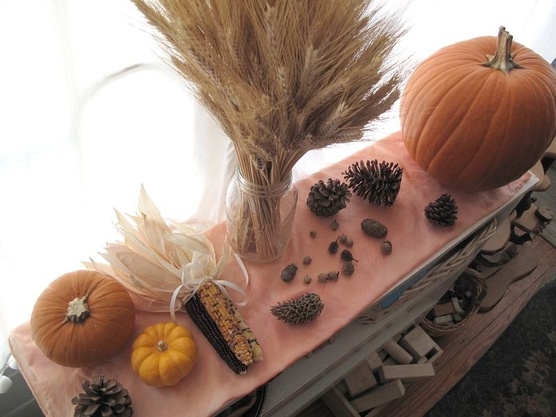 seasonal nature table