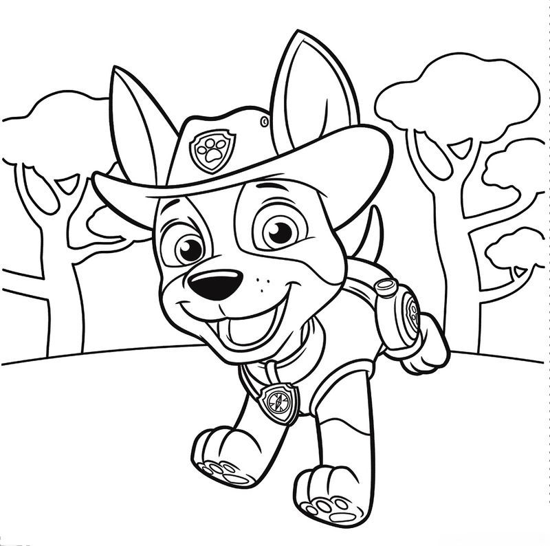 Paw Patrol Coloring Pages Super Pups Photos