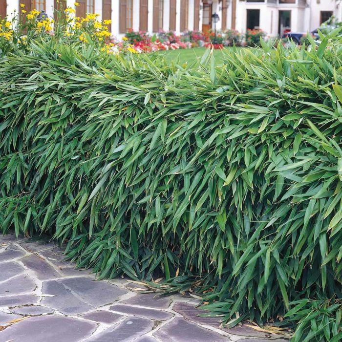 garten gestalten pflanzkasten rankgitter kieselsteine ziegelwand, Garten und erstellen