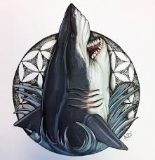 Картинки по запросу акула эскиз тату | Морские татуировки ...
