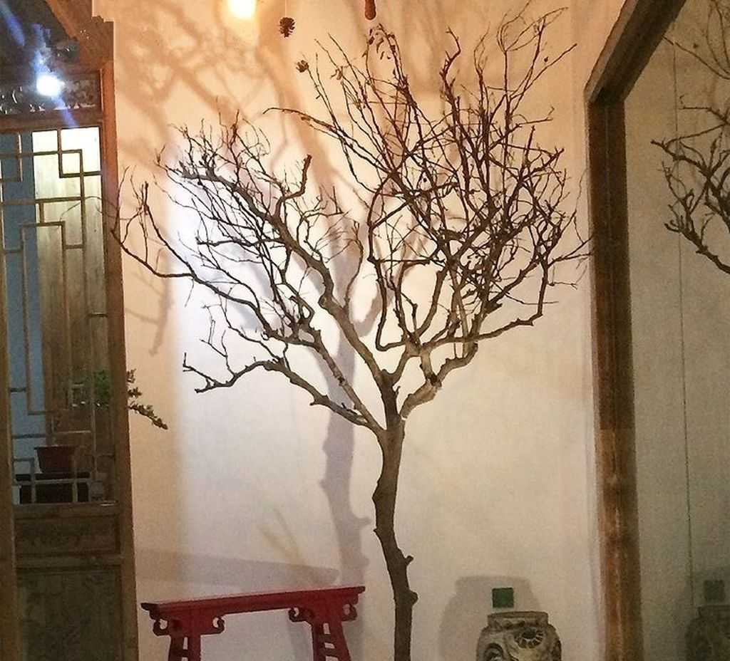 Amazing Branches Dried Tree Decor Ideas Frugal Living In 2020 Tree Branch Decor Dry Tree Dried Tree Branches