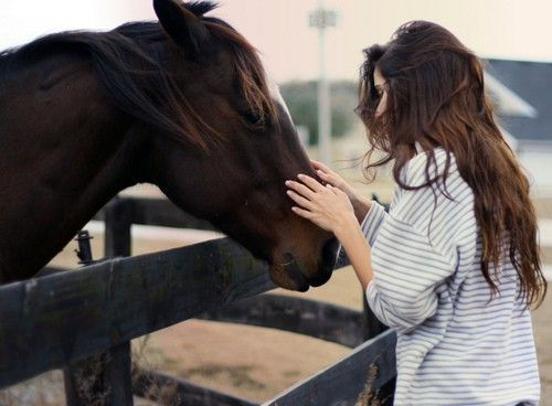 With horses.