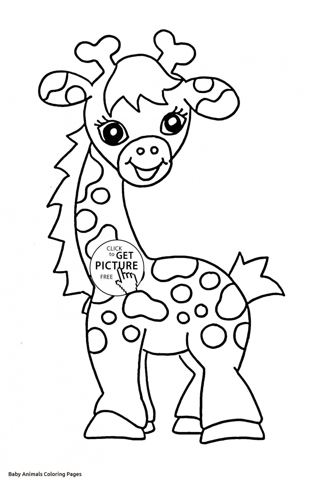 Pin On Animal Coloring Pages Printable And Online