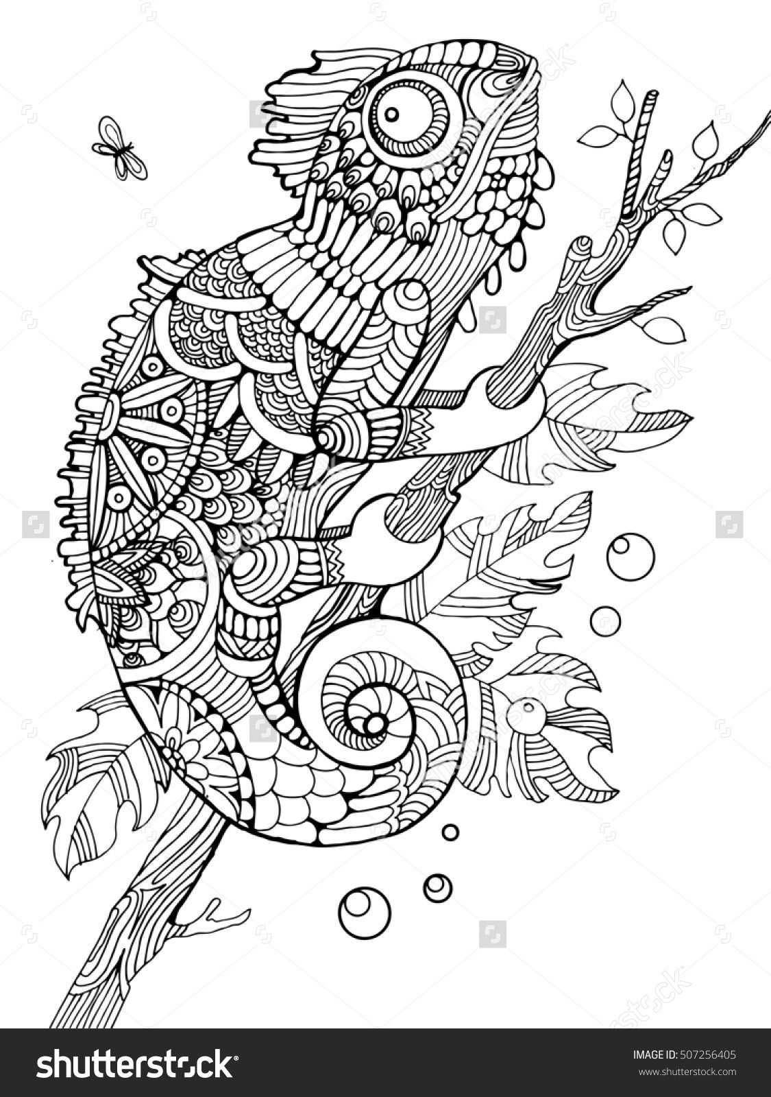 Chameleon coloring page for adults zentangle style | Coloring ...
