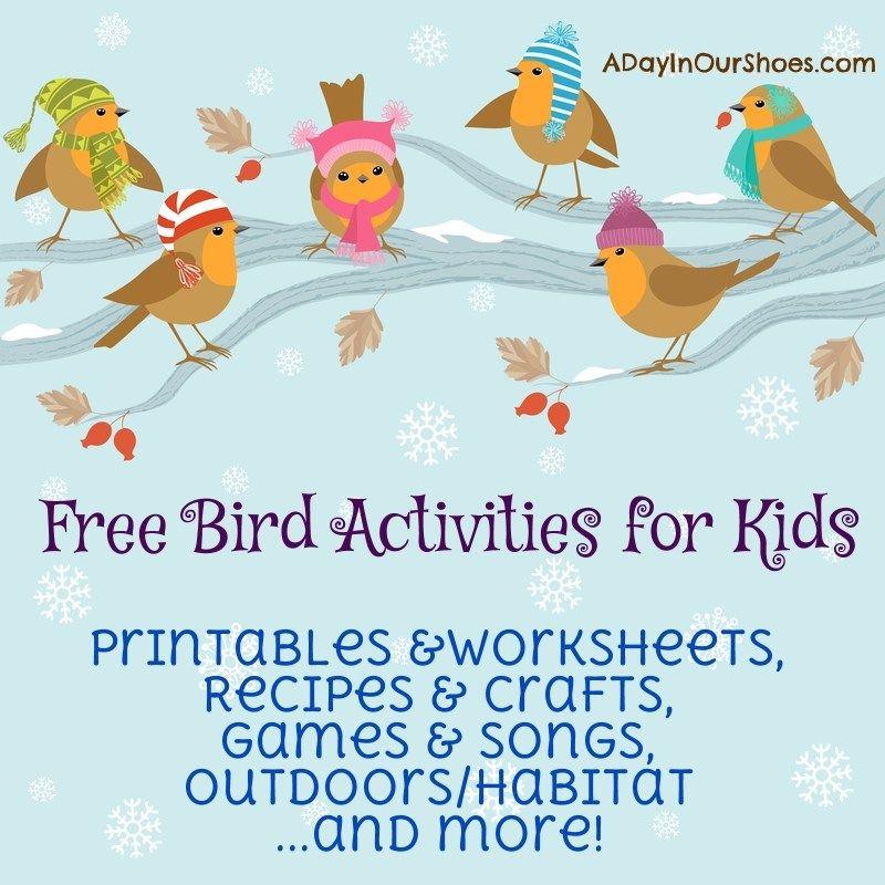 Backyard Bird Activities For Kidsfeeders Crafts Printables And