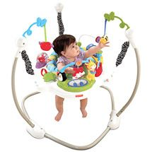 30759bec9 Walmart  Fisher-Price Discover  n Grow Jumperoo