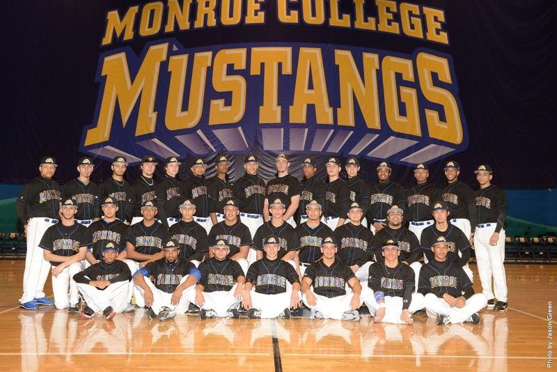 2013 Monroe College Baseball Team College Baseball Monroe College Baseball Team