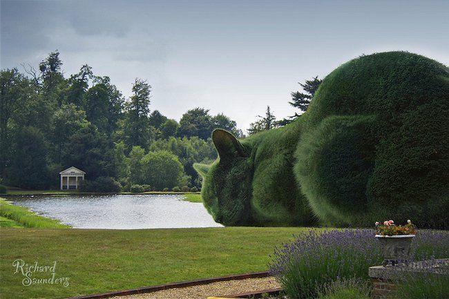 Ele criou arbustos gigantes e surreais em homenagem ao gato falecido