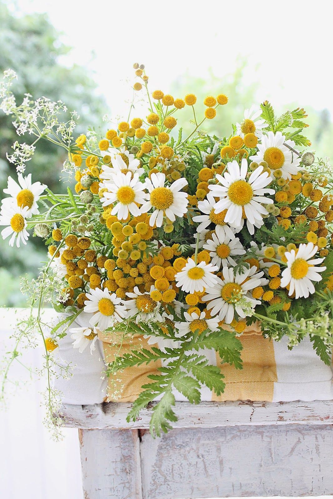 for you my friends because i smile every time i think of you uc