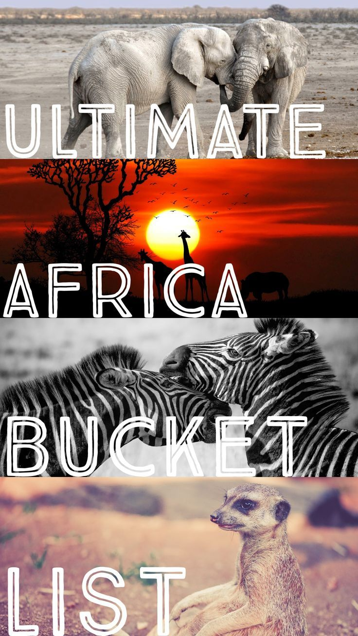 The Ultimate Southern Africa Bucket List Africa Travel Africa Africa Destinations