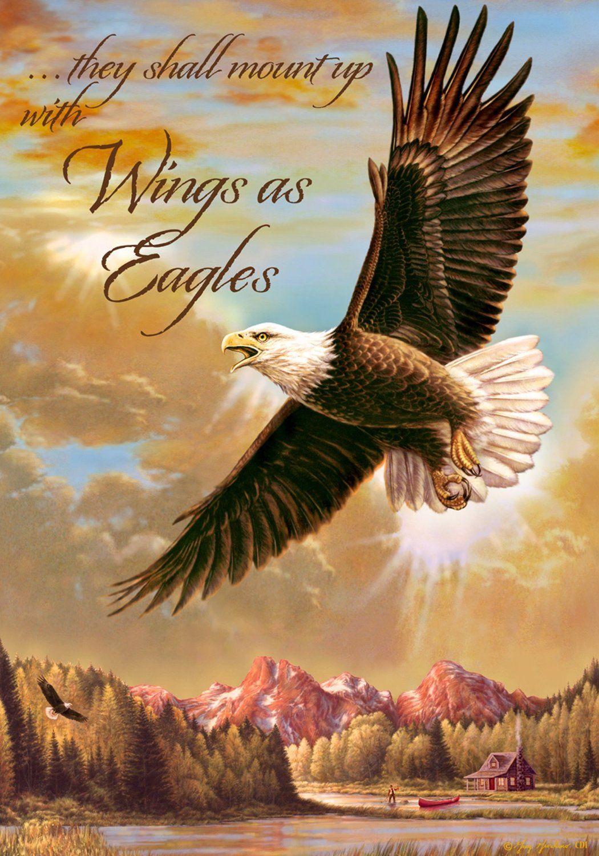 Amazon.com   Inspirational Wings As Eagles Cabin Garden Flag 12 x 18    Outdoor Decorative Flags   Patio 65c1a3d1c