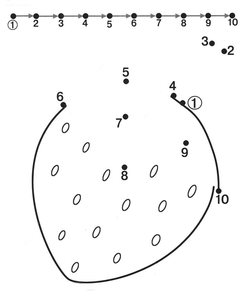dot to dot worksheet strawberry | matematika | Pinterest ...