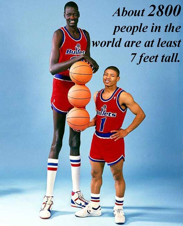 Percentage Facts Gallery Manute Bol Basketball Players Nba Players
