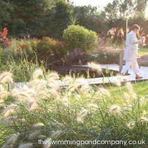 The www.theswimmingpondcompany.co.uk specialises in designing and building Swimming Ponds, often referred to as Natural Swimming Pools or Natural Pools, throughout Norfolk, Suffolk, Essex, Cambridgeshire, Bedfordshire, Northamptonshire and Hertfordshire.