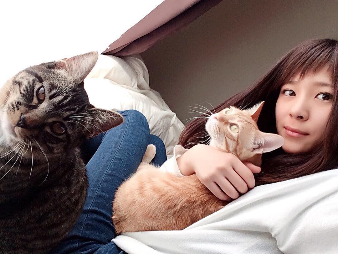 """karintoteacher: """". 今日は#保護猫祭 なんだって かりんもしらちゃんも 参加しなきゃヘ()ノ . 保護してくれた人に感謝 出逢わせてくれた幼馴染みに感謝 . 我が家に来てくれて ありがとう 出逢えて良かった()幸せ . . ってええ事書いてんのに しながら こっちガン見してる白玉(ω;) . おやつ置き場の前で 絶賛訴え中のかりんとう先生(ω;) . ふふりーだむ笑 . 猫バカ全開で愛してるわ 大好き . . #猫#ねこ#ねこ部#ペコねこ部#猫バカ#鍵しっぽ#保護猫#cats_of_instagram#catsagram#instacat#petstagram#lovecats#mycat#catsofinstagram#Cat_Features #catoftheday#catsofinstagram#World_Kawaii_CAT#bestcats_oftheworld #茶トラ男子部#茶トラ#かりんとう先生 #子猫#キジトラ#キジトラ白#靴下猫#kitten#kitty#kittens#しらたま"""""""