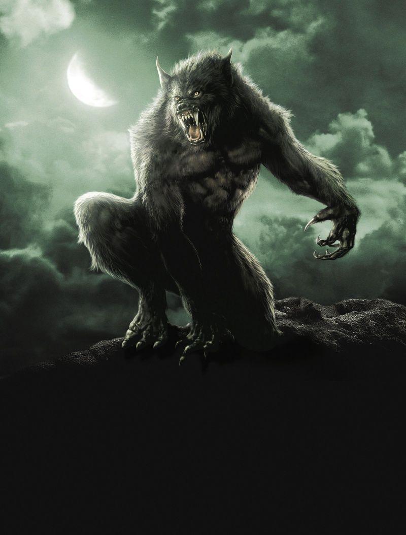 Van Helsing Werewolf (800×1054)