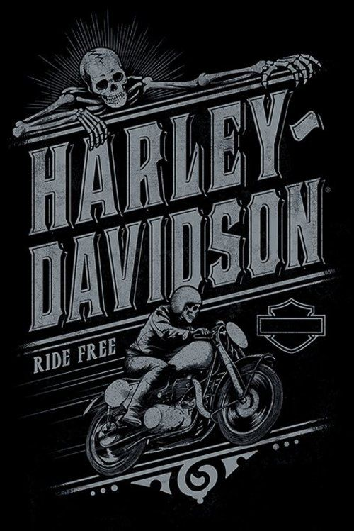 die besten 25 harley davidson poster ideen auf pinterest. Black Bedroom Furniture Sets. Home Design Ideas