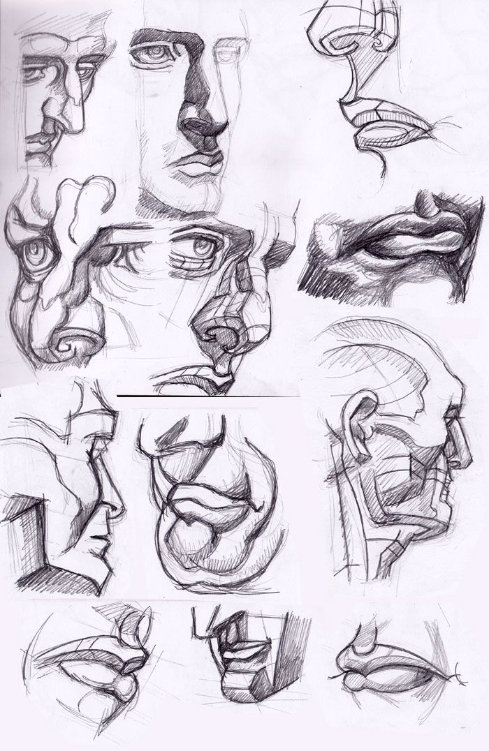 Anatomy drawings of the skull by Dr. paul Richer - Google Search ...