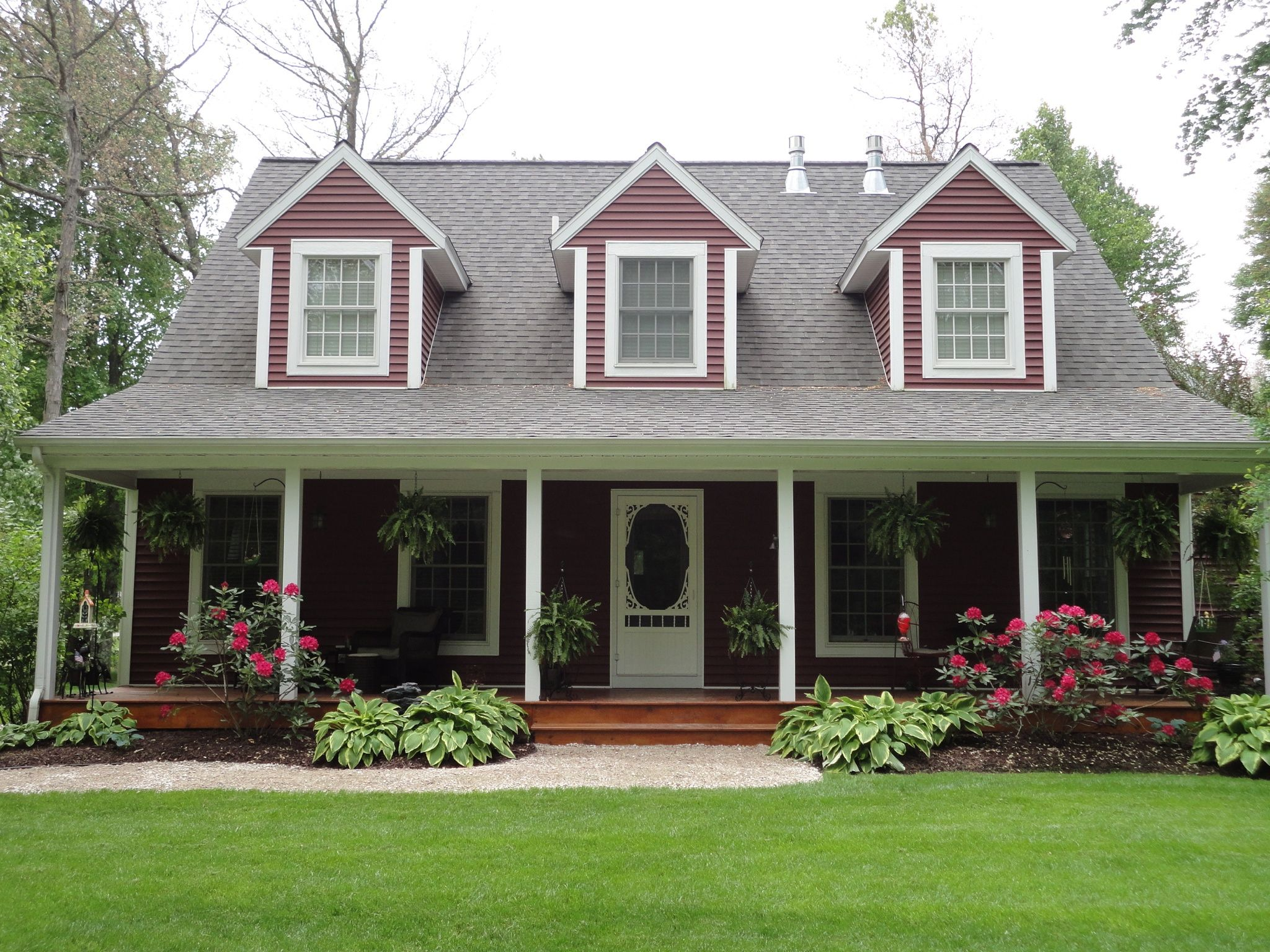 Hostas And Blooming Rhododendron Front Yard Landscaping With