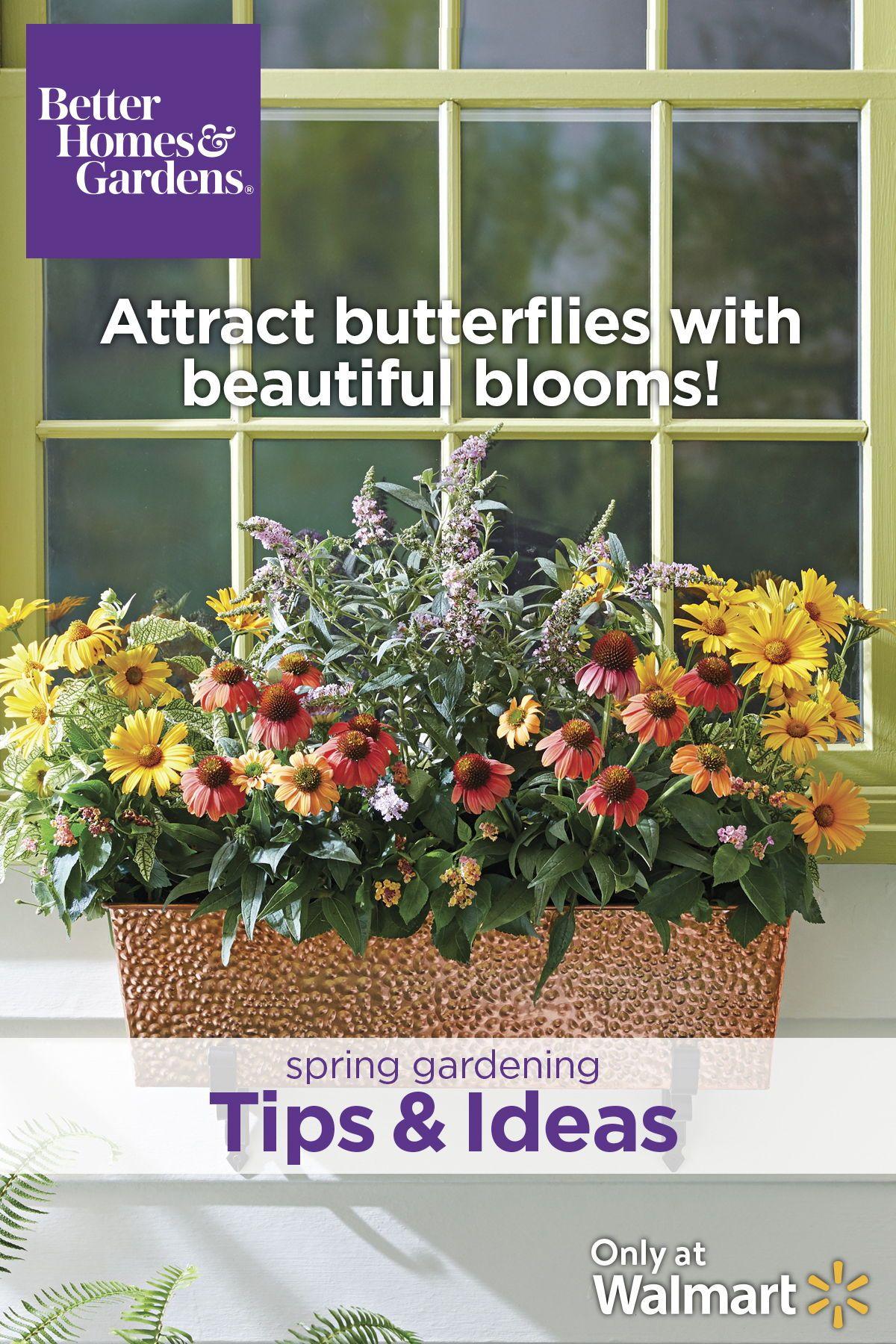1ffc3cc08c7ec293fa4fa23506fe472b - Better Homes And Gardens Flowers Walmart