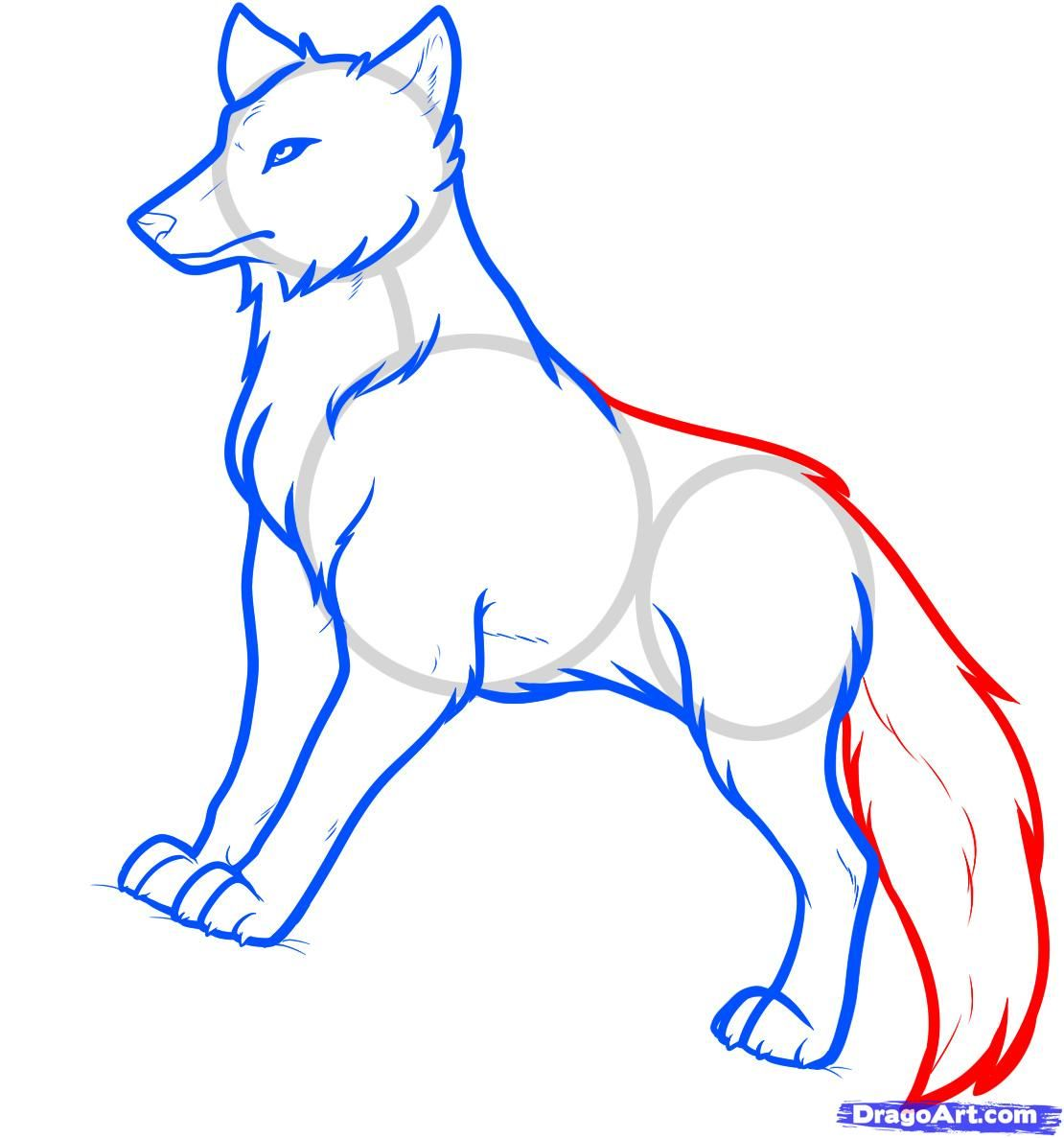 Image Result For How To Draw Anime Wolf Ears And Tail Anime Drawings Anime Wolf Wolf Drawing
